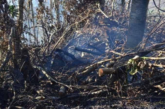Fındık bahçesini temizlerken 30 dönümlük alanı yaktı