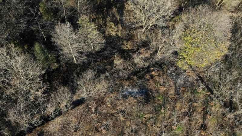 Ormanlık alanda çıkan yangına mahalleli koştu