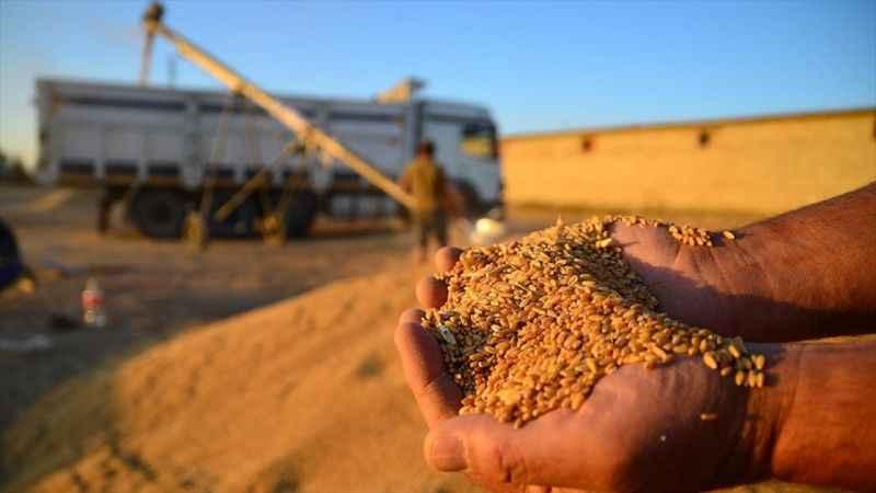 TMO ana tarım ürünlerinde fiyat artışı olması halinde devreye girecek