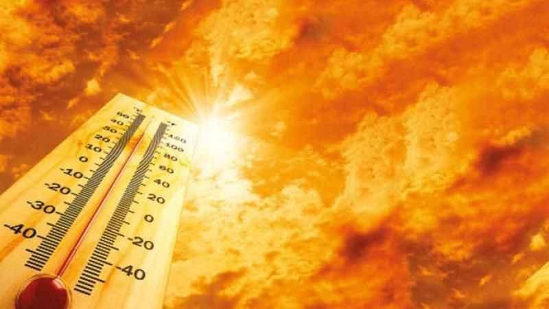 Türkiye'nin en yüksek sıcaklığı bakın Sakarya'da nerede ölçüldü