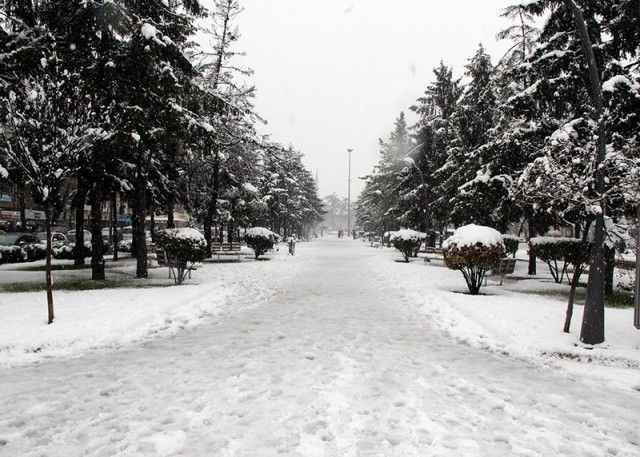 İşte 2008 yılında Sakarya'da beyaz kabusa dönen efsane kar yağışından akıllarda kalanlar...Tarihler yine Şubat ayını gösteriyordu!