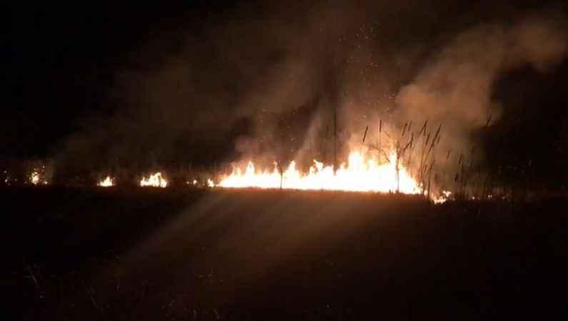 Karasu'da sazlık alanda yangın