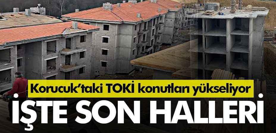 Korucuk'taki TOKİ konutları yükseliyor... İşte son halleri
