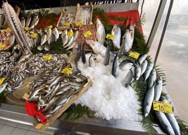 Sakarya ve Zonguldak'ta soğuk hava balık fiyatlarını arttırdı