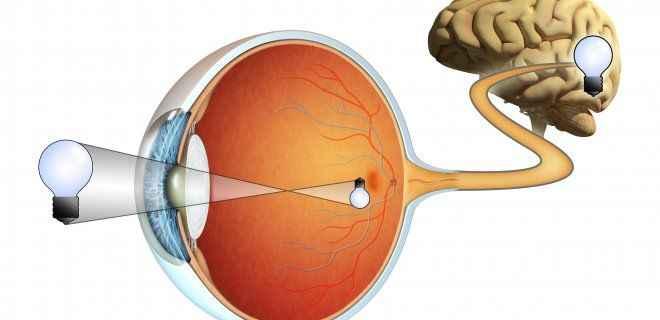 """Göz tansiyonu hastalığı""""Glokom"""" nedir?"""