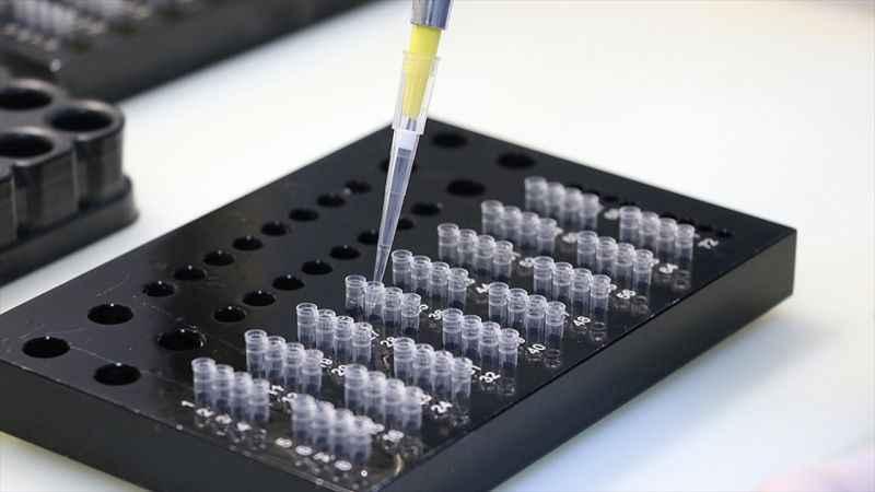 Kovid-19'un İngiltere varyantı tespit edilenlerin izolasyon süresi sonunda PCR testi zorunluluğu olmayacak