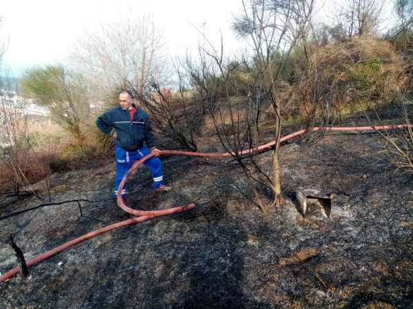 Yalova'da makilik alanda çıkan yangın söndürüldü