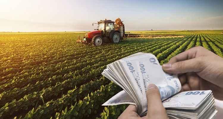 Sakarya'daki 48 bin çiftçiye müjde! Gübre ve mazot paraları yatıyor...