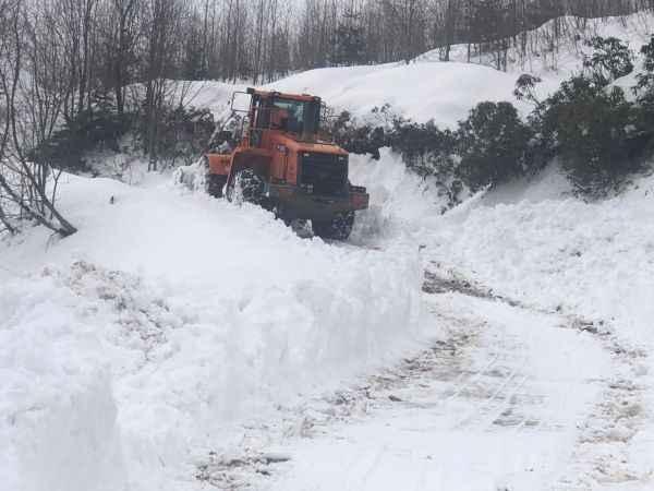 Sakarya'da kar nedeniyle yaylada mahsur kalan 4 arkadaş kurtarıldı