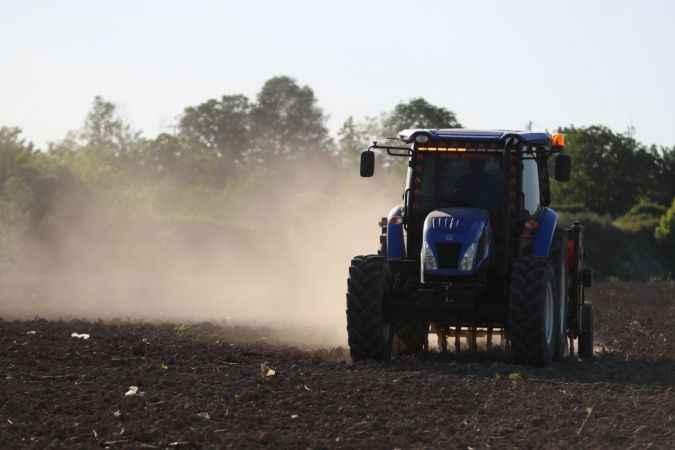 Sakarya'da 350 dekarlık atıl alanda endüstriyel kenevir tohumları toprakla buluştu
