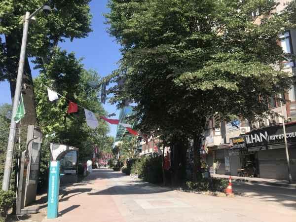 Doğu Marmara ve Batı Karadeniz'deki 7 ilde sokağa çıkma kısıtlamasına uyuluyor