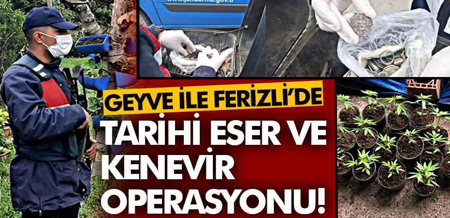 Geyve ile Ferizli'de tarihi eser ve kenevir operasyonu!