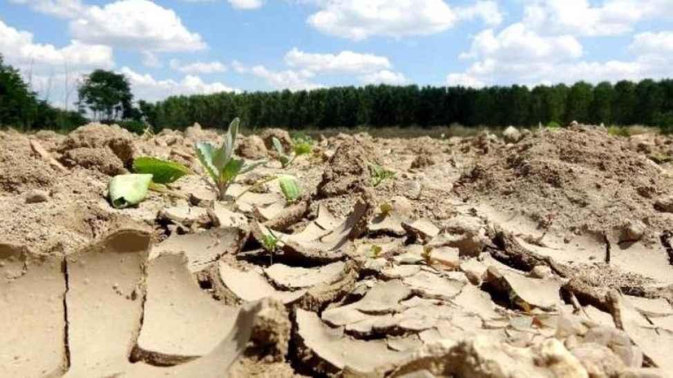 Ülke kuraklıktan kırıldı, Sakarya çok şükür etkilenmedi!