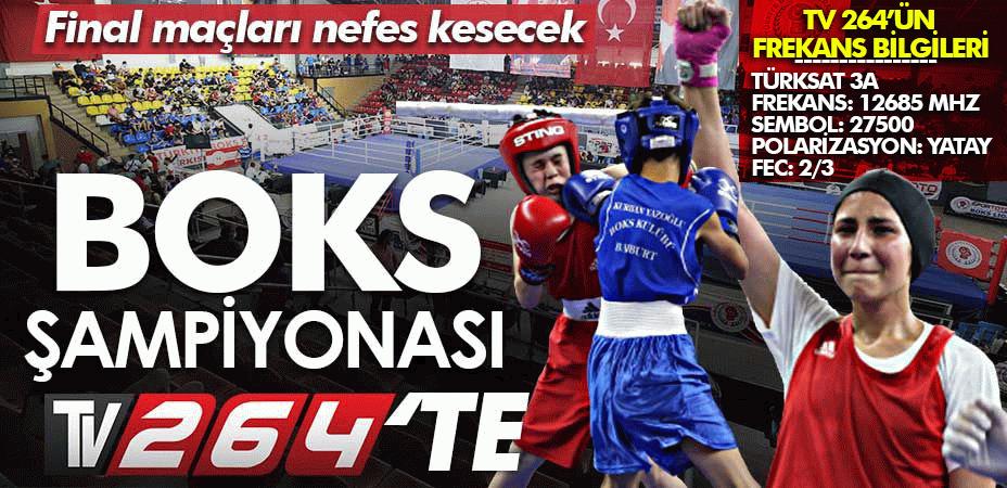 Türkiye Boks Şampiyonası final maçları canlı yayınla TV264'te…
