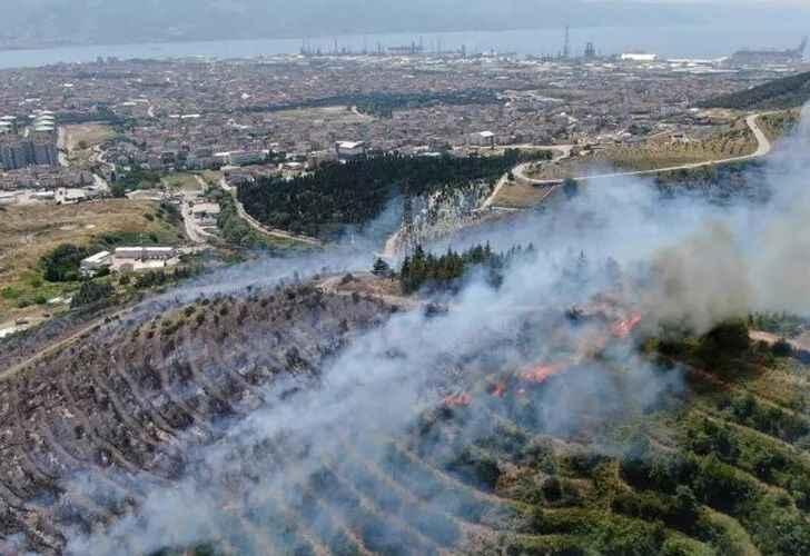 İşte komşudaki orman yangının çıkış nedeni
