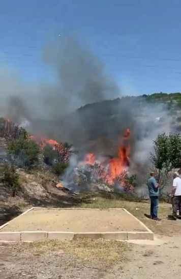 Akdeniz yanıyor derken yangınlar Kocaeli'ye de sıçradı!