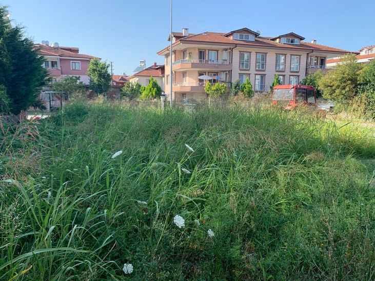 Serdivan'da vatandaşların yabani ot şikayeti
