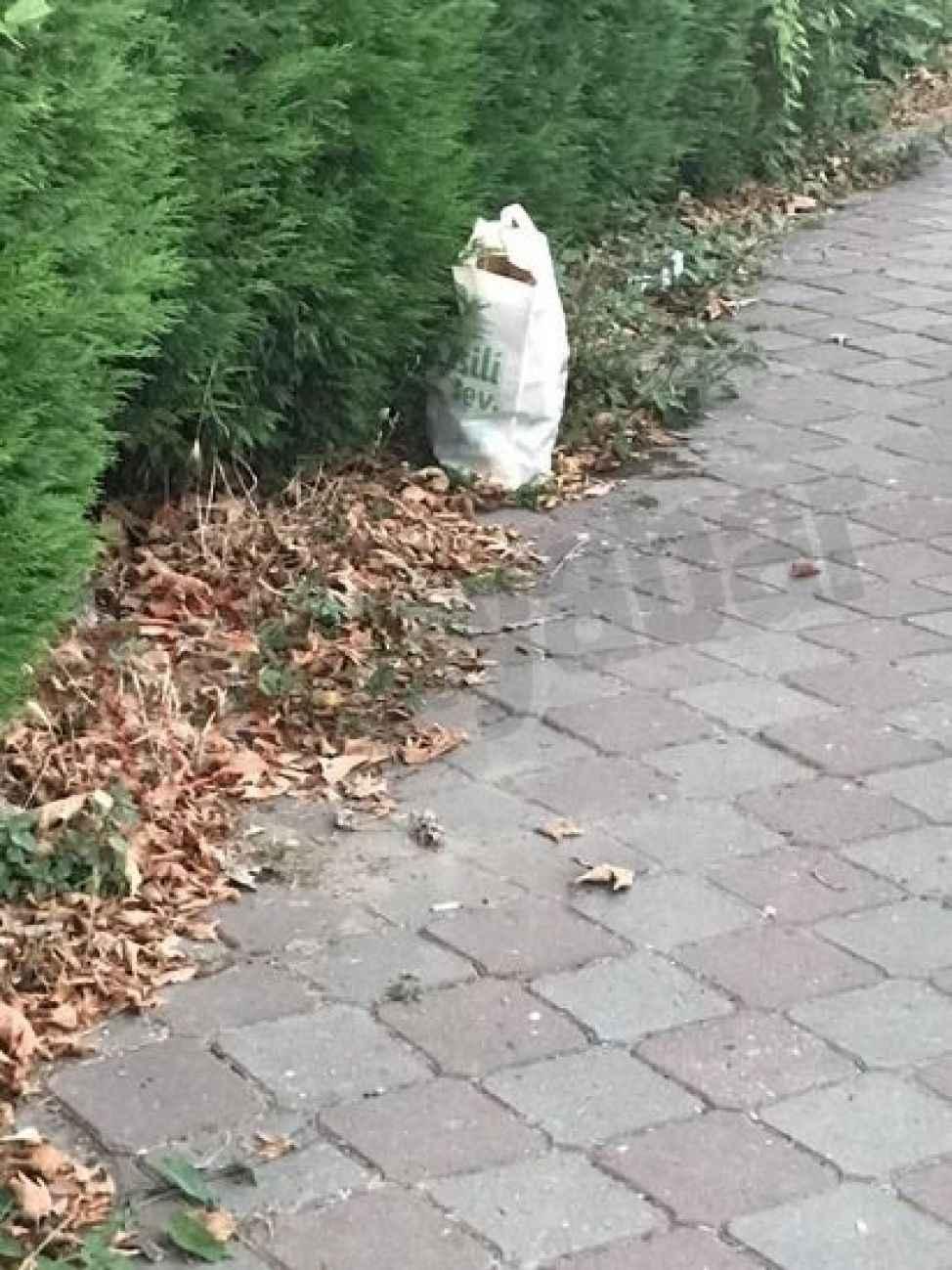 Sürekli evlerinin önüne çöp atan yabancı turistlerden bıktı!