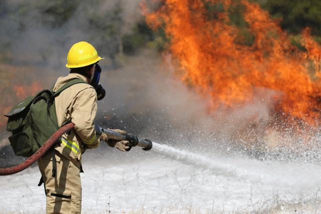 Bakanlık duyurdu… Sakarya'da bir orman yangını kontrol altına alındı