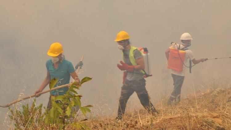 Milas ve Bodrum yangınlarında yeni gelişme! 6 tutuklama