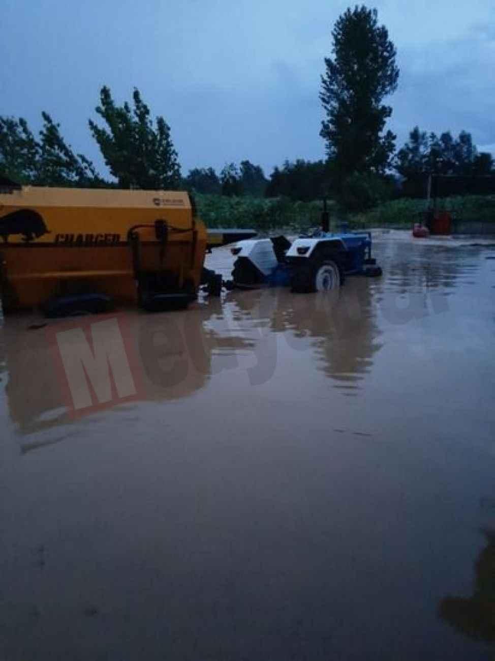 Besi çiftliği sular altında kaldı!