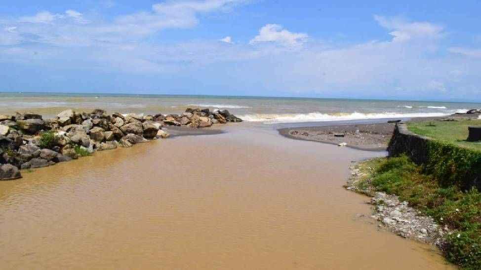 Düzce'de Karadenizin bir kısmı kahverengiye boyandı