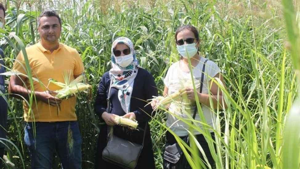 Kadın çiftçiler tarımsal yeniliklerle buluşuyor