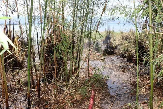 İzmit'te yaklaşık 400 metrekarelik sazlık alan yandı