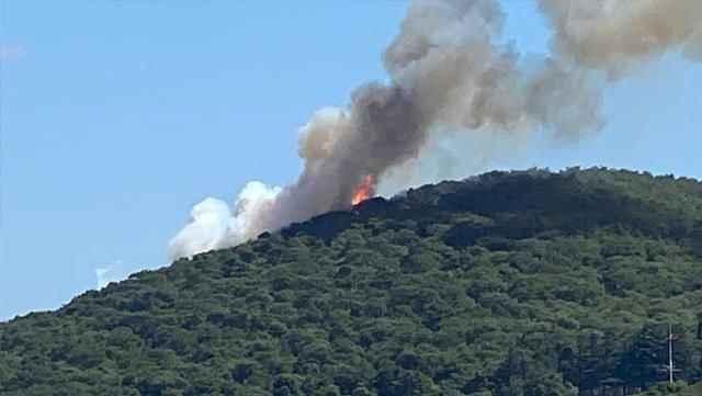 Heybeliada'da orman yangını çıktı