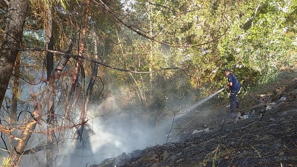 Taraklı'daki orman yangınına avcıların erken müdahalesi faciayı önledi