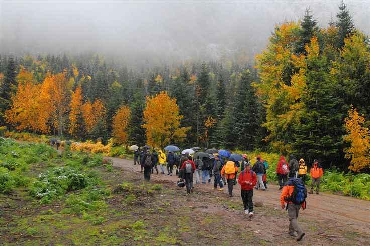 Sakarya'da doğa yürüyüşleri tekrar başlayacak mı?