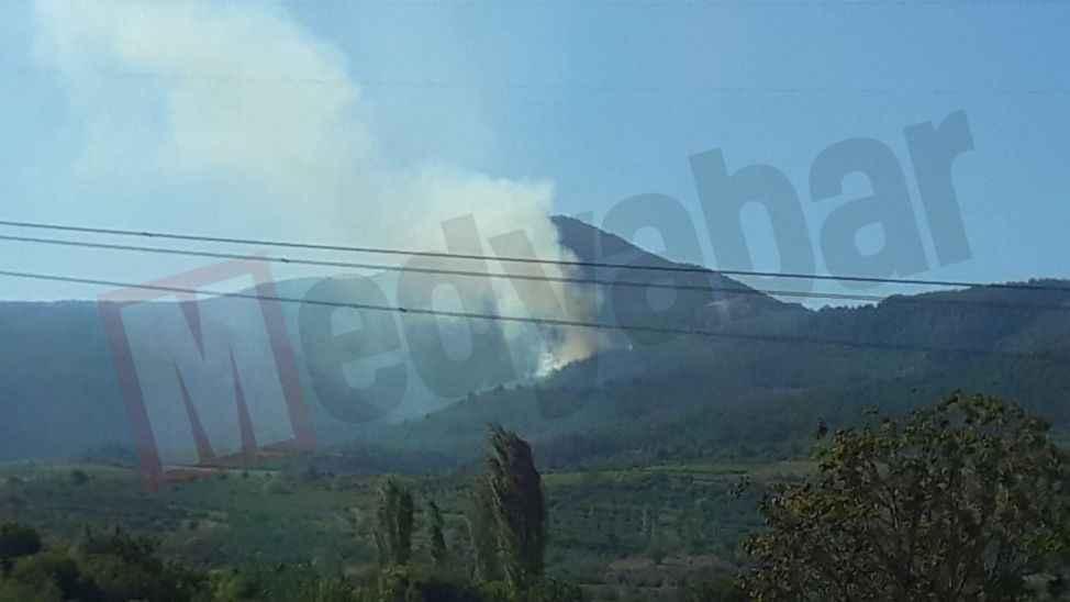 Pamukova'da ormana sıçrayan yangın kontrol altına alındı!