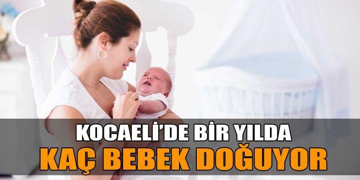 İllere Göre Doğum İstatistikleri