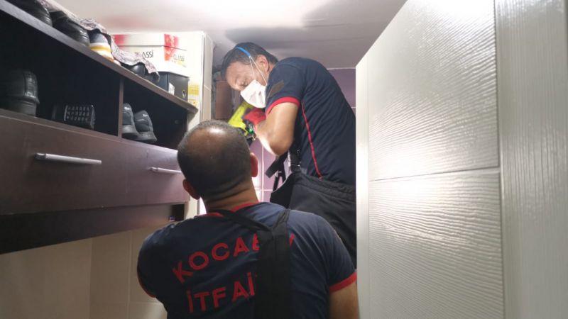 Apartmanın havalandırma boşluğuna düşen kedi yavrularını itfaiye kurtardı