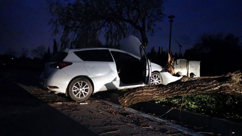 Kocaeli'de ağaca çarpan otomobil sürücüsü yaralandı