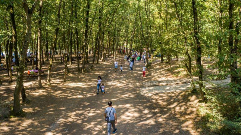 Avrupa'nın en büyük doğal yaşam parkı 2020'de 5 milyon ziyaretçiyi ağırladı