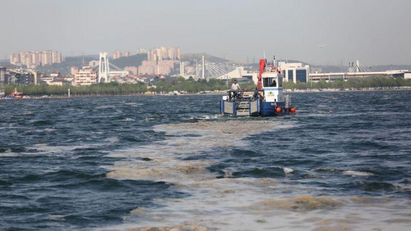 Kocaeli'de 50 günde 150 ton deniz salyası toplandı