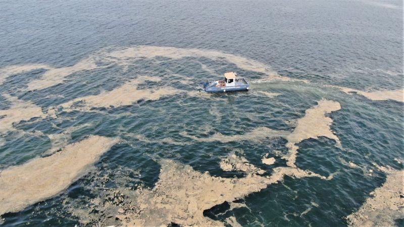 'Deniz salyası'na çözüm için GTÜ harekete geçti