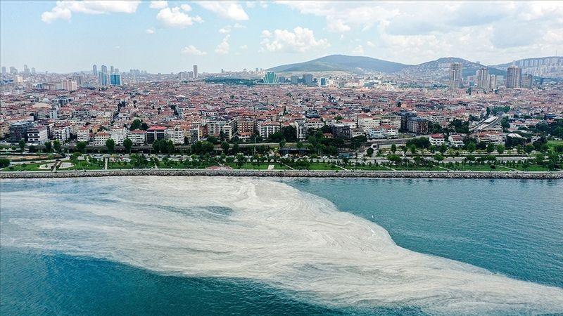'Deniz salyası' için bilim insanları YÖK'te toplanacak