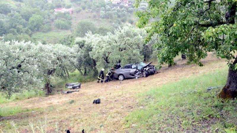 Kocaeli'de otomobil yamaç aşağı sürüklenerek zeytin ağaçlarına çarptı