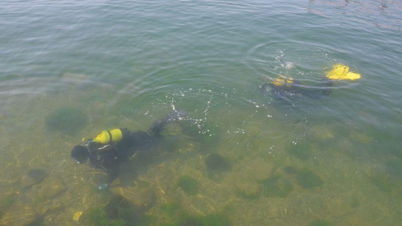 """Kocaeli'de su altındaki """"emektar vapur"""" müsilajdan arındırıldı"""