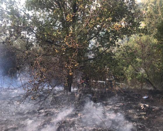 Kocaeli'de ağaçlık alanda çıkan yangın söndürüldü