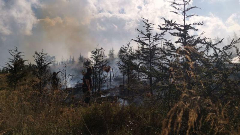 Kocaeli'de mesire alanında yangın