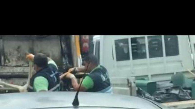 Belediyeden skandal uygulama köpekleri çöp arabasında presliyorlar