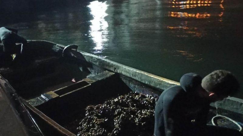 İzmit Körfezi'nde yasa dışı av