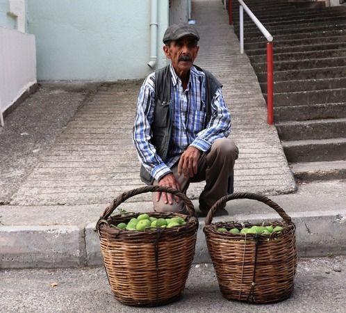 Aydın'da ilek alım satımı başladı