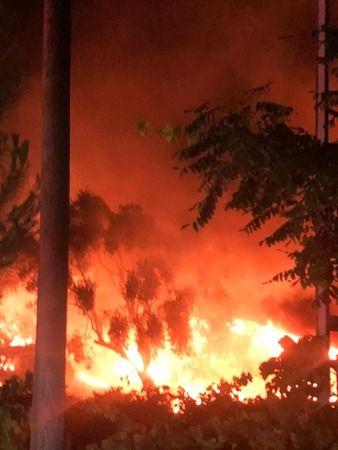 Nazilli'de çıkan yangın can aldı!