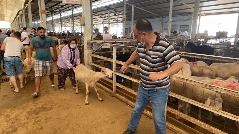 Nazillililer hayvan pazarına akın etti