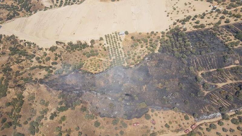 Alevler yerleşim alanlarını tehdit etti