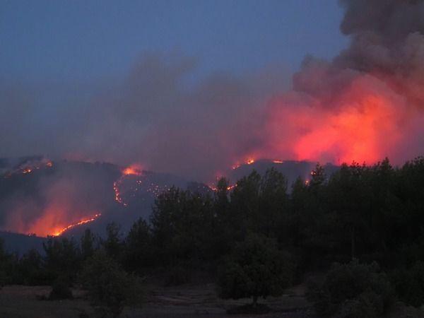Bozdoğan'da yangın kontrol altına alındı